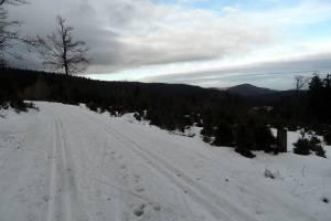 W Górach Bialskich widoczna jest odwilż, ale wciąż można pobiegać na nartach
