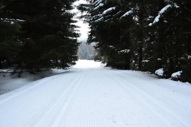 W wysokich Sudetach wciąż świetne warunki do biegania. Fotka przedstawia trasy w Górach Bialskich.