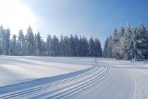 Przez Góry Bystrzyckie po narciarskich trasach biegowych