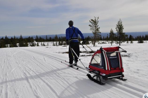 Nordic Cab doskonale sprawdza się w zimie