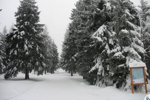 raport-2017-02-09-7-m snieznika