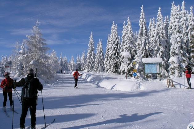 Rozdroże pod Cichą Równią - tu się spotykają ważne szlaki narciarskie